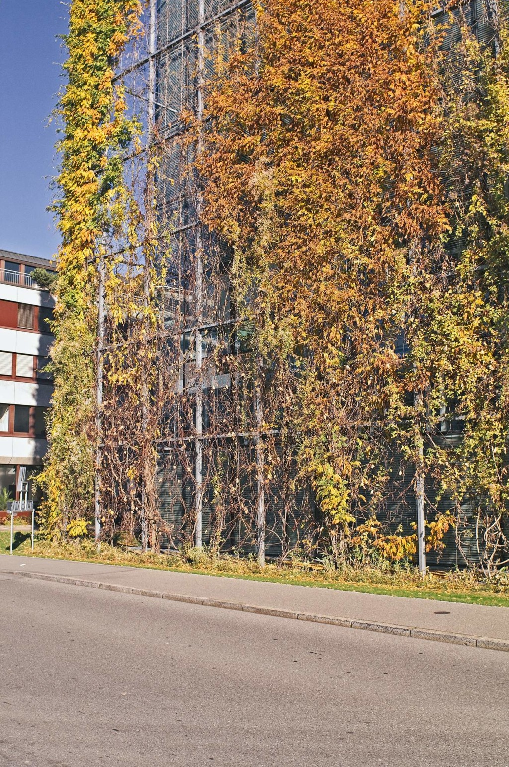 vertical garden Sägereistrasse – urbanidentity